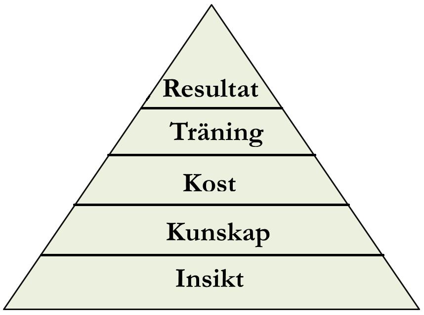 Ditt Mål Förändring Pyramid v2